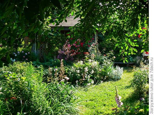 Мой сад - мое место силы