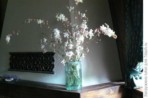 Гаура - стая белых мотыльков