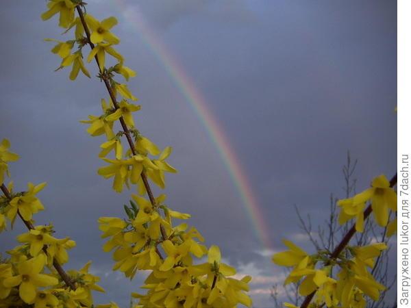 Весенний гром