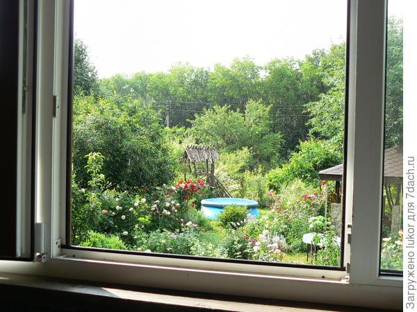 Вид на сад с диванчика на балконе