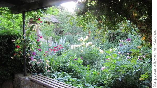 Июнь в саду
