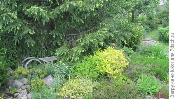 Сани под елкой