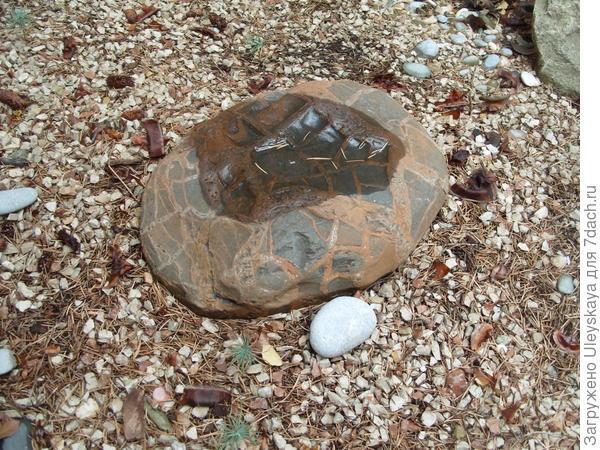 Камень-черепаха.