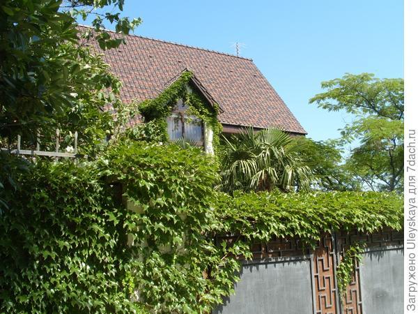 Дом Софии Ротару в Никите