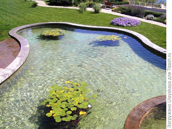 Декоративный бассейн.