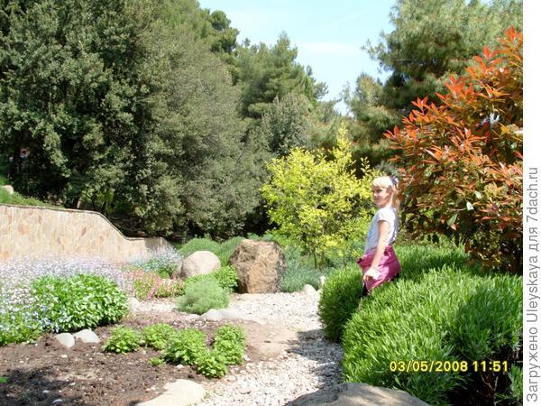 В саду душистых растений.