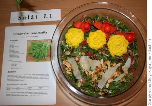 Блюдо из салата мизуны готово