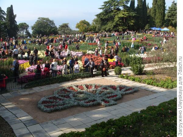 Презентация выставки Осенний бал хризантем 2013 года