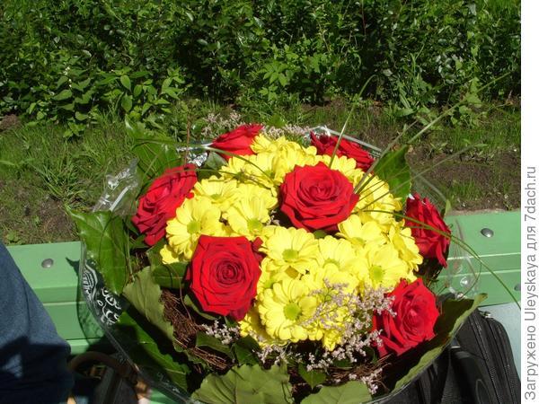 Букет: красные розы и желтые хризантемы