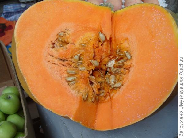 Овощ ноября - тыква
