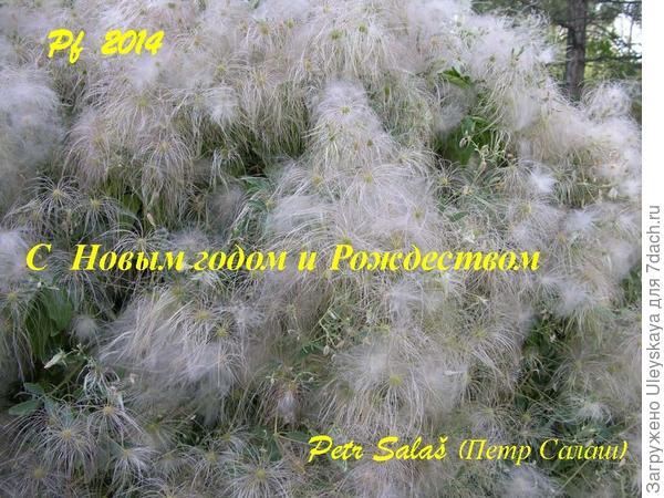 Поздравление от Петра Салаша