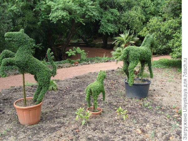 Зеленые лошадки
