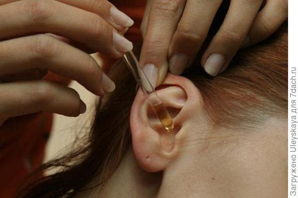 Тыквенные капли в уши