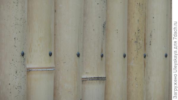 Фрагмент бамбуковых ворот