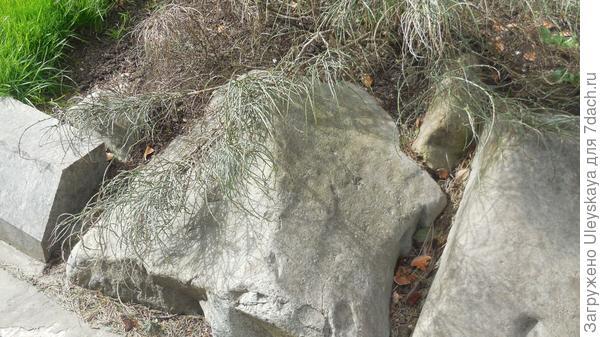 Камни в бордюре