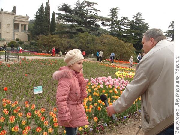 Диана рассказывает, что тюльпаны выращивает ее дедушка