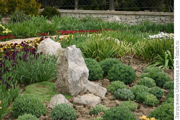 Сезонные работы в саду и огороде: третья неделя апреля