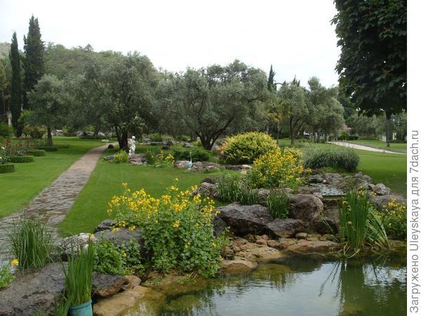 Мимулюс пятнистый в античном саду