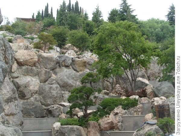 Японский сад (вид снизу)