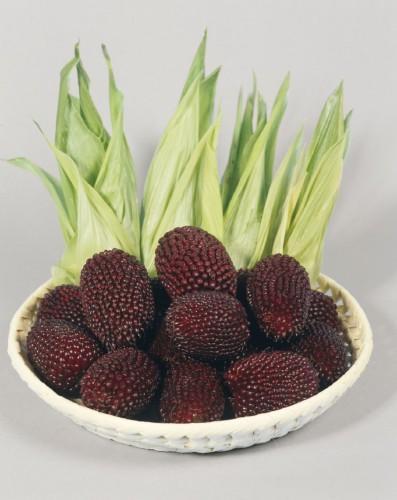 Кукуруза обыкновенная сорт Strawberry Corn