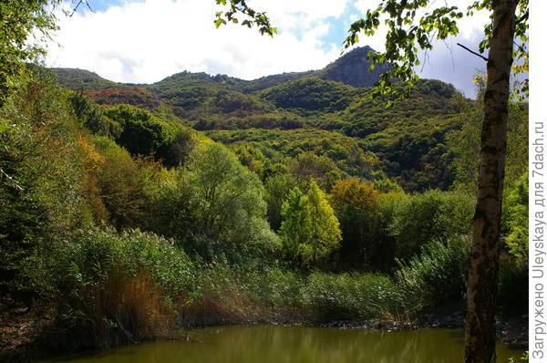 Красота осеннего крымского леса