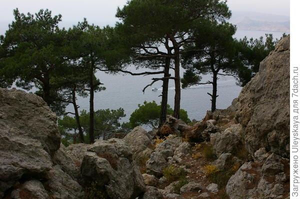 Каменный хаос, сосны, море…