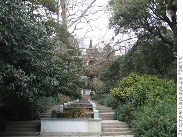 Никитский ботанический сад, зима, каскад