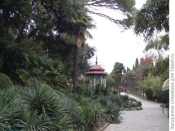 Никитский ботанический сад, Нижний парк, зима, горка суккулентов, беседка