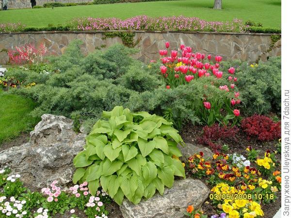 Каменистый сад или рокарий на даче – это красиво, модно (фрагмент)
