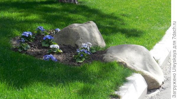 Камни на газоне