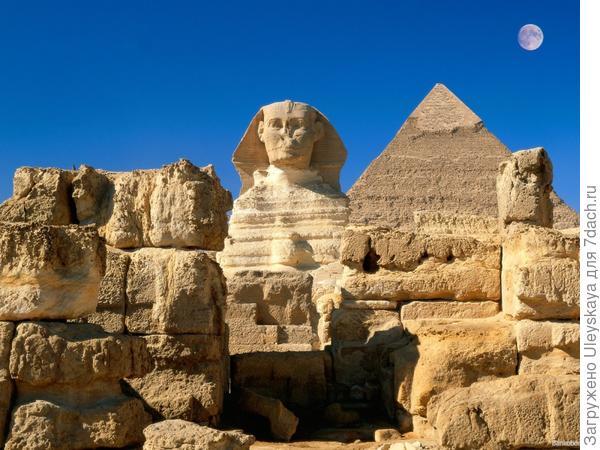Сфинксы, Древний Египет, фото сайта www.liveinternet.ru
