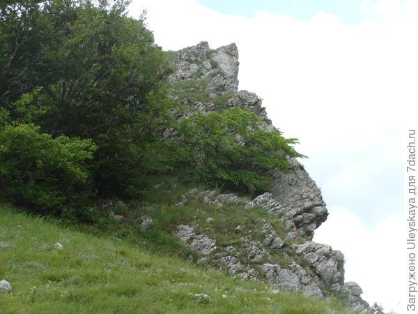 Гора Атбаш – голова лошади