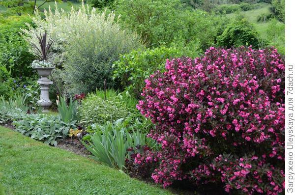В миксбордере, фото сайта agardenforall.com