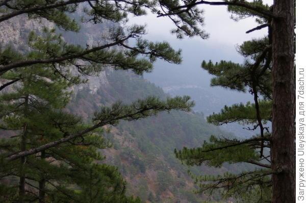 Вид с Боткинской тропы в декабре