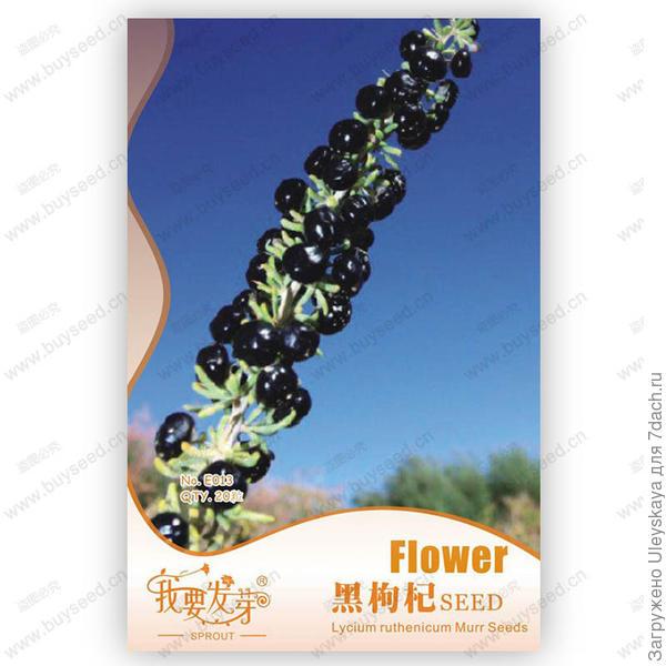 Упаковка, использовано фотой сайта ru.aliexpress.com