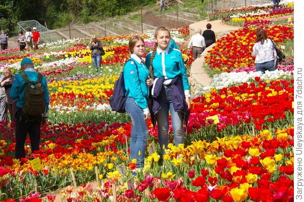 На Параде тюльпанов 2016