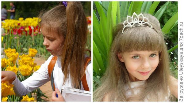 Принцесса Лия