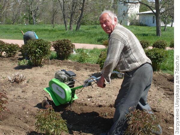 Обработка земли в ботаническом саду ТНУ