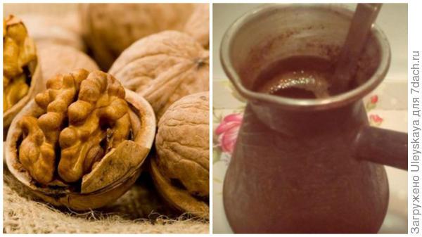 Грецкие орехи, фото сайта foodclean.ru, кофе, фото сайта forum.say7.info