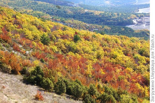 Осенняя сказка в Крыму