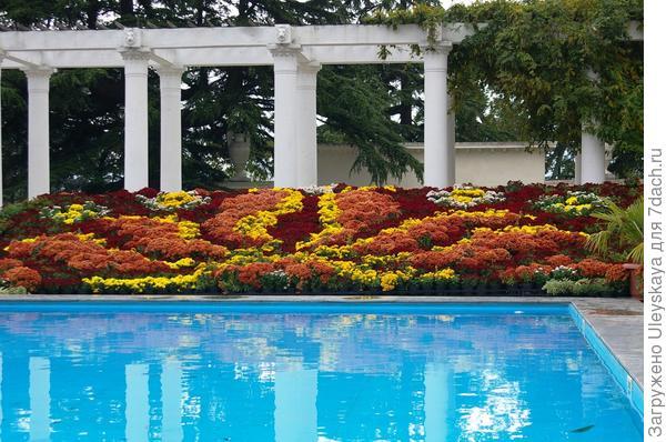 Хризантемы в осенней композиции