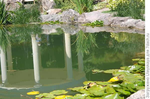 Отражение форм в водоеме