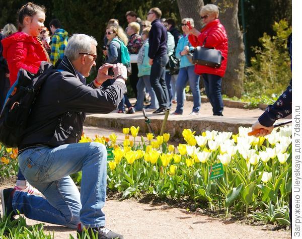 Есть поле деятельности для фотографов