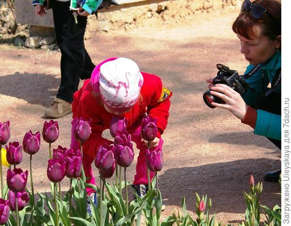 Дети , в основном, нюхают цветки