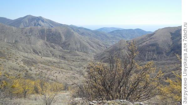 Пейзажи Зеленогорья