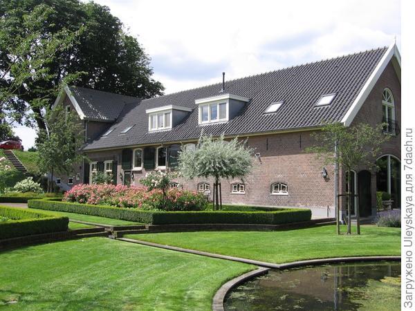 Груша иволистная Pendula - солитер в палисаднике у дома. Фото с сайта bomenwebwinkel.nl.