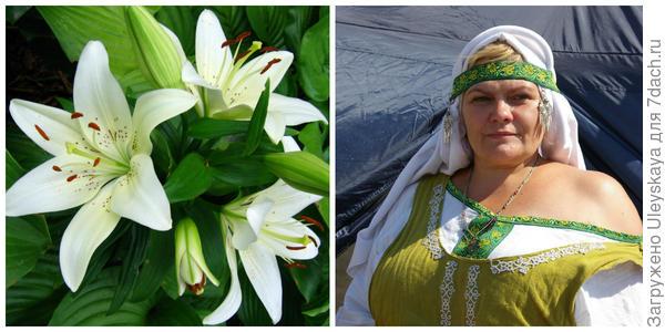 Лилия, фото автора. Вторая красавица фестиваля, фото автора.