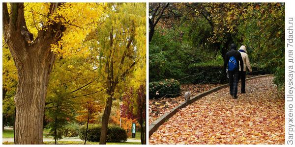 Осенние тропинки, фото автора