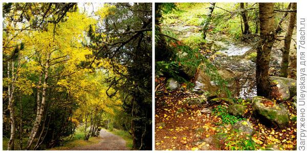 Щедрая осень, фото автора