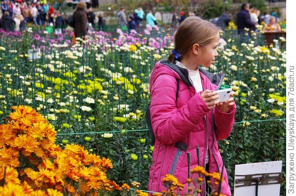Девочка в хризантемах